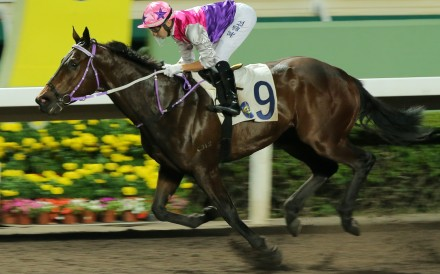Foodie Princess salutes at Sha Tin in February last year. Photos: Kenneth Chan