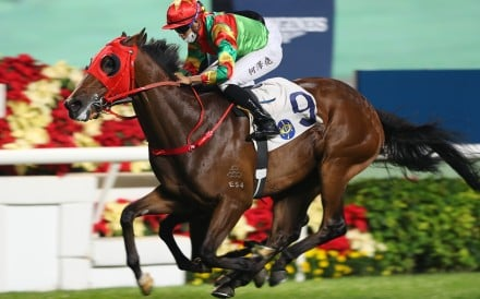 Tourbillon Diamond coasts to victory at Sha Tin last month. Photos: Kenneth Chan
