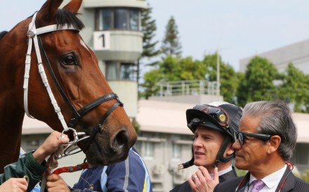 Jockey Zac Purton and trainer Tony Cruz with Exultant after his win in last year's Centenary Vase. Photos: Kenneth Chan
