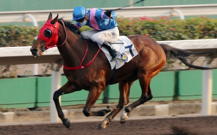 Antoine Hamelin pilots Hongkong Great to victory at Sha Tin last start. Photo: Kenneth Chan