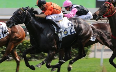 Simply Spectacular storms to victory at Sha Tin on Sunday. Photos: Kenneth Chan