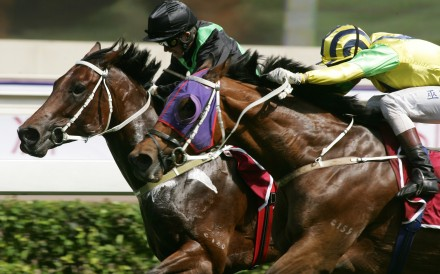 Bullish Luck (right) edges out Silent Witness to win the 2005 Champions Mile. Photos: Kenneth Chan