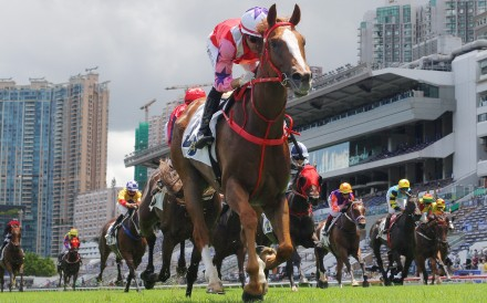 Drops Of God salutes at Sha Tin last month. Photo: Kenneth Chan