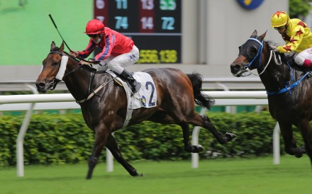Victory Scholars hangs on to win at Sha Tin on Saturday. Photos: Kenneth Chan