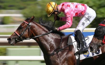 Harry Bentley pumps his fist as he wins aboard Preciousship at Sha Tin on Sunday. Photos: Kenneth Chan