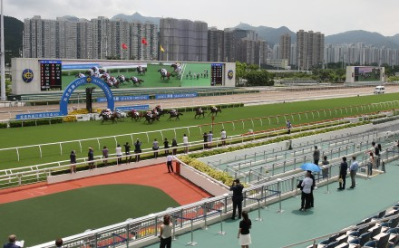 A smattering of fans look on at last season's opening meeting at Sha Tin. Photos: Kenneth Chan
