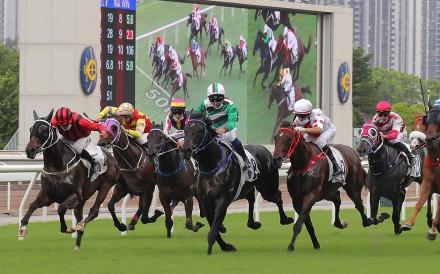Horses thunder down the straight at Sha Tin. Photos: Kenneth Chan