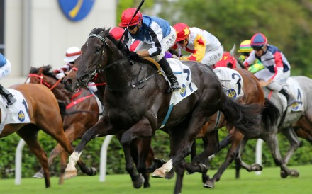 Vincent Ho lifts Naboo Attack to victory at Sha Tin in May. Photos: Kenneth Chan