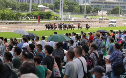 Punters watch on as the field for race five charges down the home straight at Sha Tin on Sunday. Photos: Kenneth Chan
