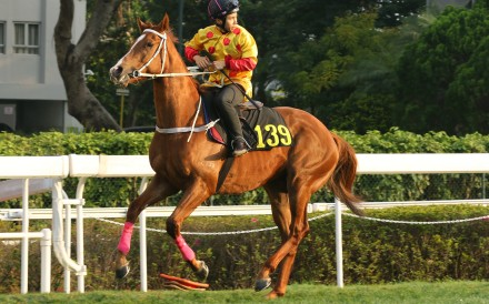 Dice Roll, then named Gold Win, with Matthew Poon after a trial at Sha Tin. Photos: Kenneth Chan