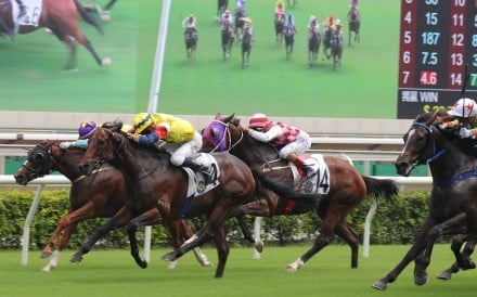 Horses fight out a finish at Sha Tin on September 12. Photos: Kenneth Chan