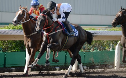 Courier Wonder wins a trial at Sha Tin on Tuesday morning. Photos: Kenneth Chan