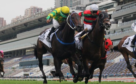 Russian Emperor (right) finishes second to Sky Darci (left) in this year's Hong Kong Derby. Photos: Kenneth Chan
