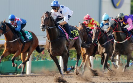 Golden Sixty wins a trial on Tuesday morning. Photos: Kenneth Chan