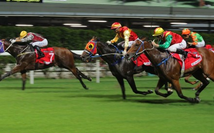 The Hong Kong Jockey Club cancelled the Happy Valley race meeting scheduled on September 18, 2019, because of fears that anti-government protesters could compromise the safety of staff, customers...