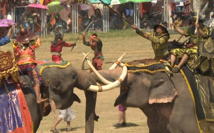 Every year, elephants take part in the Surin Elephant Round-up where the elephant handlers, called mahouts, show their skills in battle re-enactments and football games. However, critics say the...