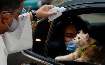 Because of the Covid-19 pandemic, pet owners in Manila took their furry friends to a special drive-through baptism ceremony on October 4, 2020, World Animal Day. The baptisms, which are normally...