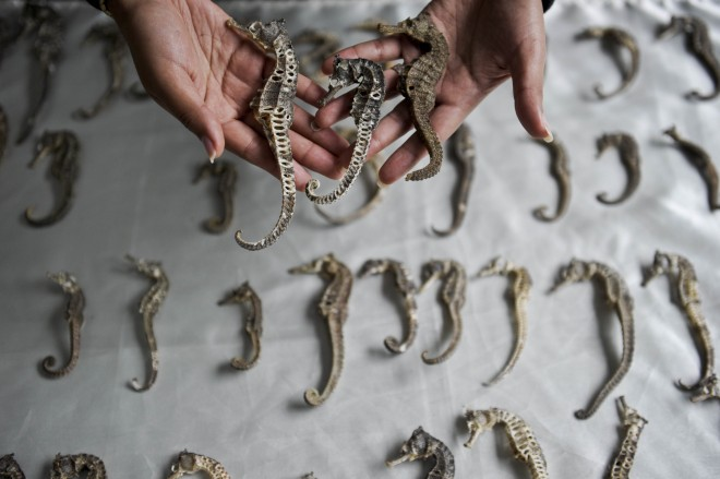 China's capital wants to punish people for 'defaming' traditional Chinese medicine