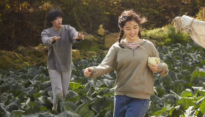 The Odd Family: Zombie on Sale film review – dead funny South Korean