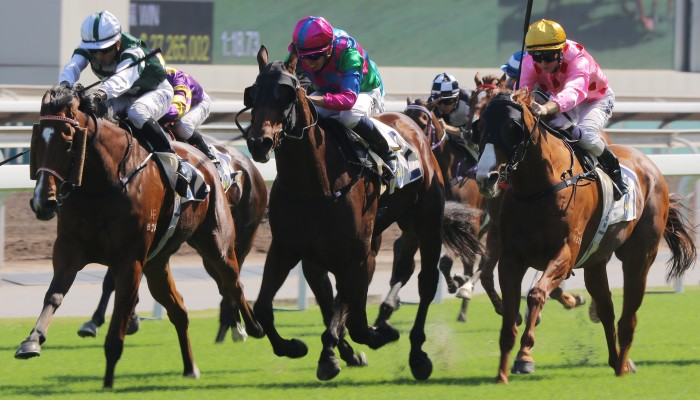 Sha Tin card, not protests, to blame for dip in turnover: Jockey Club