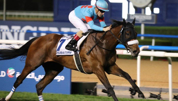 Meydan horse racing betting strategy melbourne cup betting apps for android