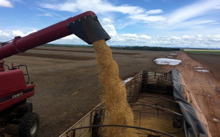 The US-China Trade War Has Been A Boon For Brazil's Soybean Farmers. But Can They Keep Up With Chinese Demand?