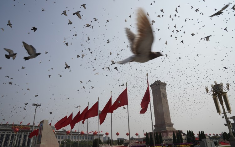 Pigeons fly over Tiananmen Square in Beijing during the celebrations for the 70th anniversary of the People's Republic on Tuesday. Photo: Xinhua