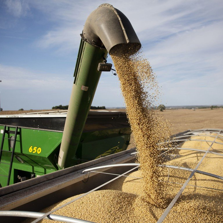 China 'regrets' WTO ruling after losing grain import quota case