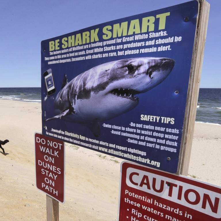 Jaws in Cape Cod': swimmers warned of great white shark