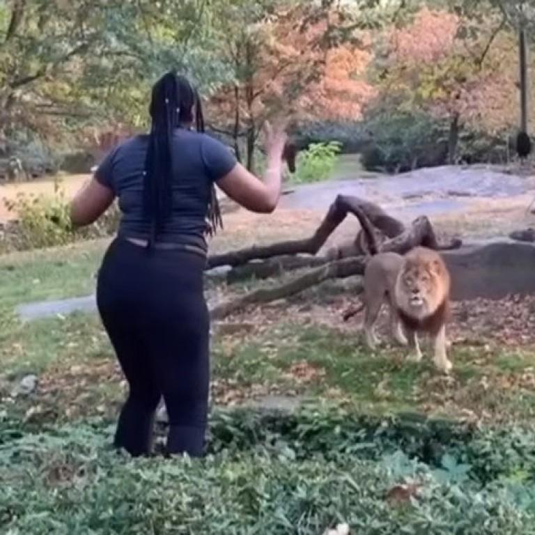 lion woman dance ile ilgili görsel sonucu