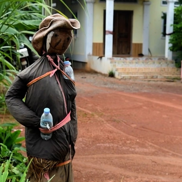 Cambodians use scarecrows to scare away the coronavirus