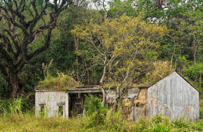 When people moved out of this ghost town, nature moved back in