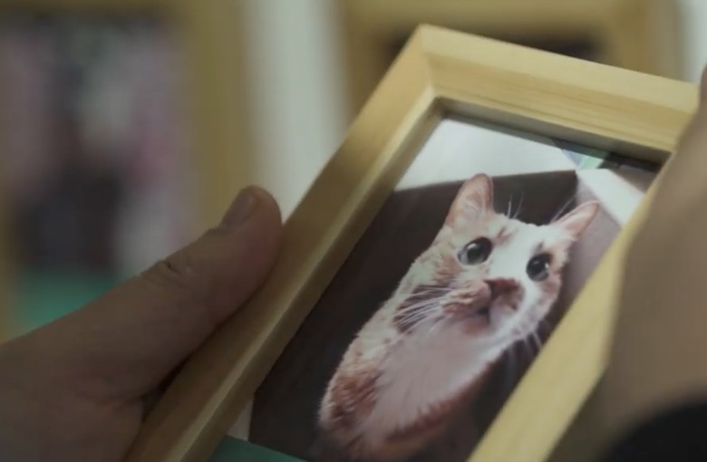 One Chinese man's fight to give pets dignified send-offs