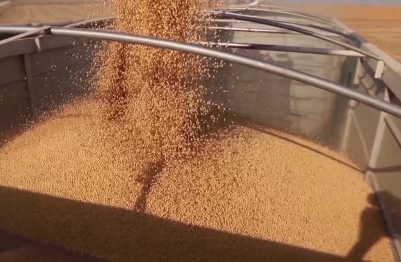 US farmers take trade war hit