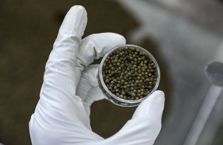 The entrepreneurs trying to put Chinese caviar on your plate