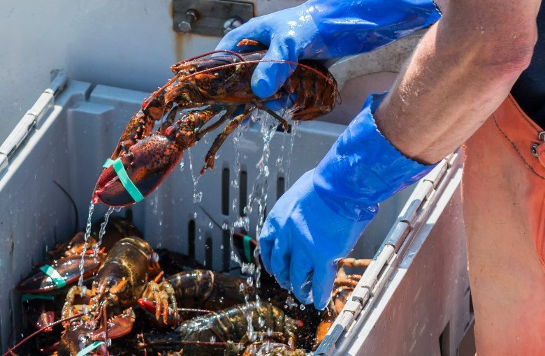 China still wants lobsters and pork, just not the American ones