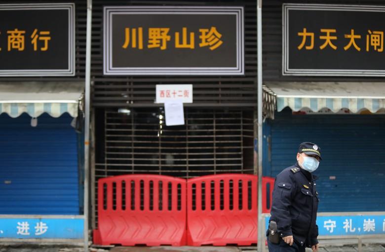 China looks ready to ban wildlife trade
