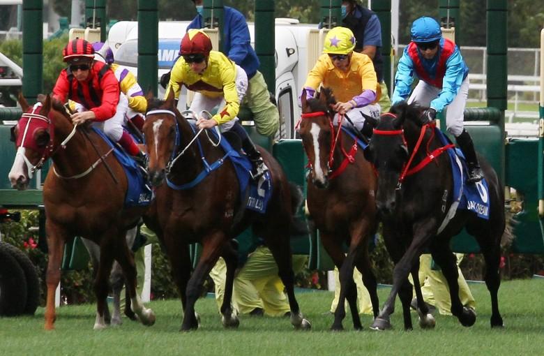 shergar cup top jockey betting sites