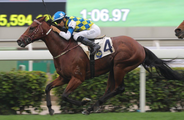 Computer Patch Stands A Chance Against Classique Legend If He Wins On Sunday Karis Teetan Hk Racing South China Morning Post Pua and hei hei patch (moana) patch. computer patch stands a chance against
