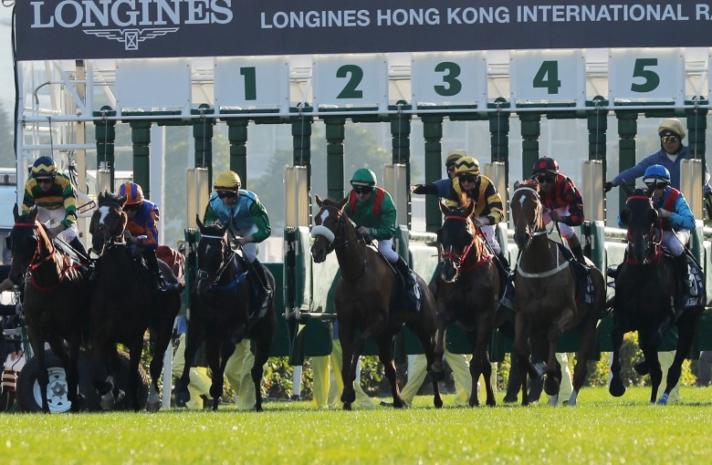 Hkjc horse race betting limited brands las vegas betting lines nfl