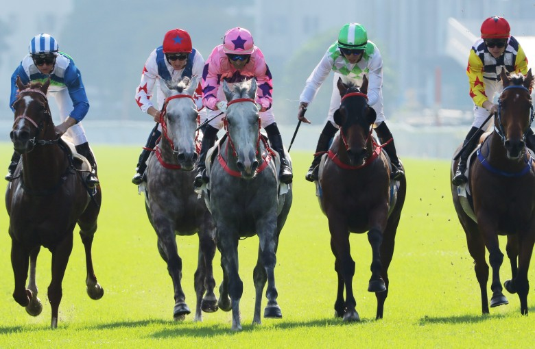 Hkjc horse race betting limited brands 6 4 betting odds explained horse