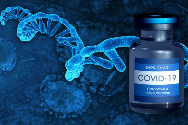 The vaccine uses messenger RNA to trigger the immune system. Photo: Shutterstock Images