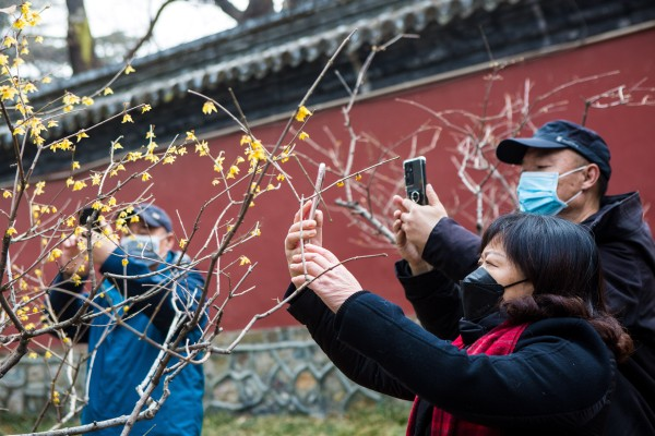 China expects a major domestic tourism spike during the Labour Day holiday. Photo: Xinhua