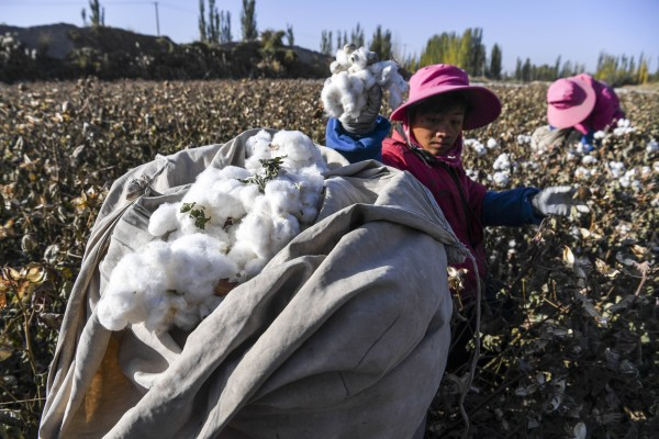 The White House says US firms with supply chain ties to Xinjiang risk being embroiled in forced labour. Photo: Xinhua