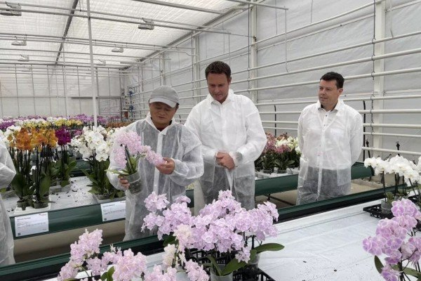 Jack Ma visiting a research institution in the Netherlands, where greenhouse technology was on display, on 25 October 2021. Photo: Handout.