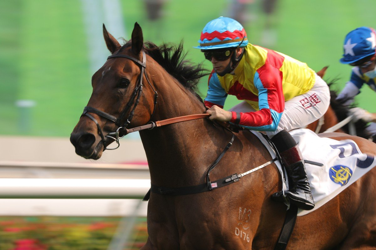 Alexis Badel guides Wellington to victory at Sha Tin last start. Photos: Kenneth Chan