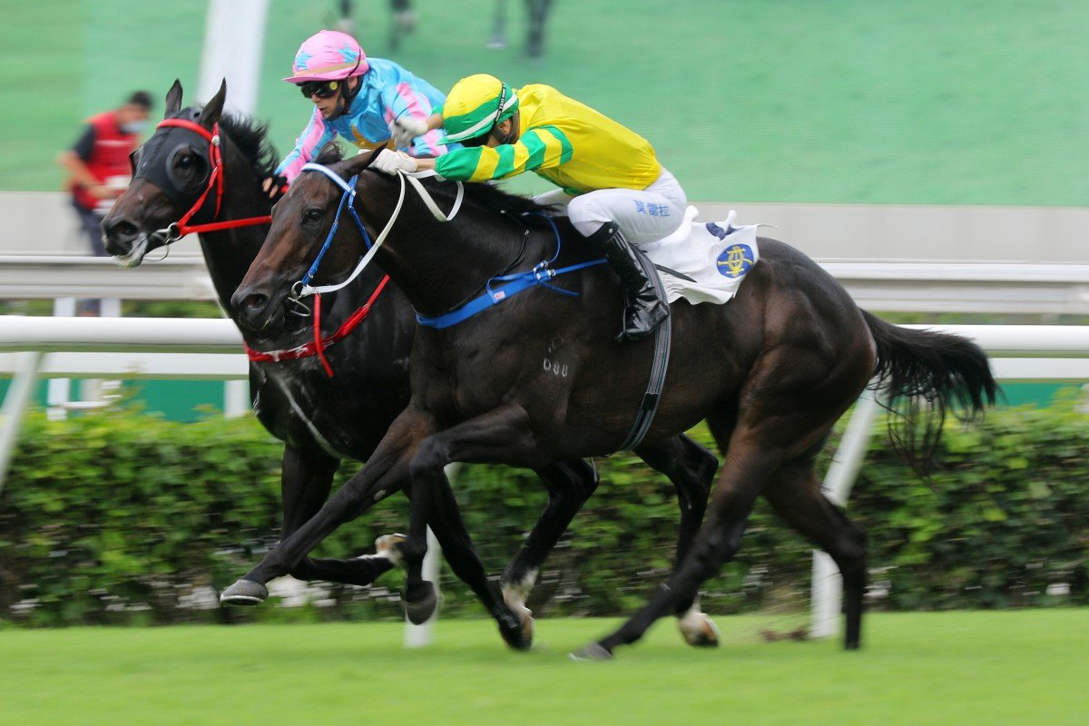 Sky Darci (outside) pips Healthy Happy in the Lion Rock Trophy last month. Photos: Kenneth Chan