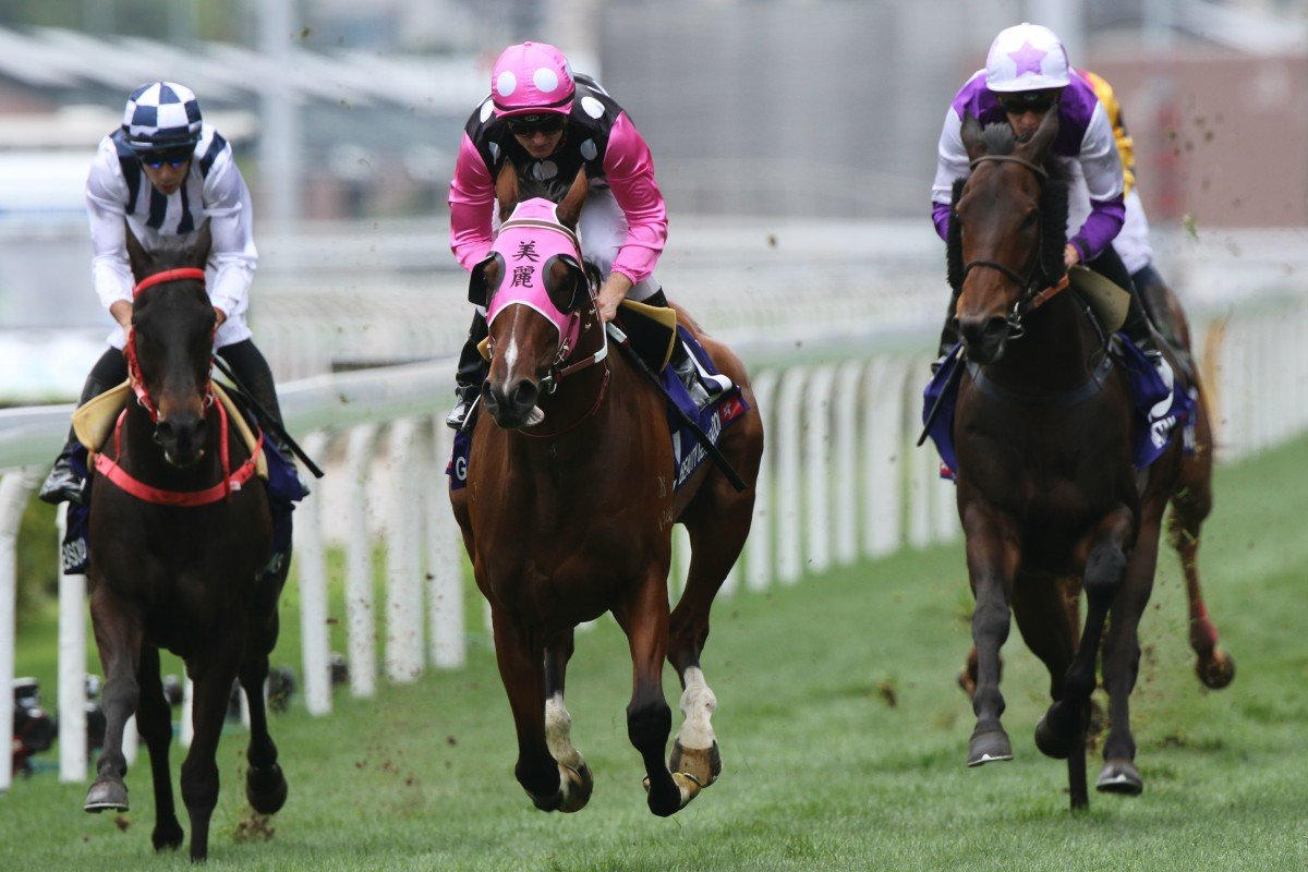Beauty Generation headlines Hong Kong's Champions Day entries. Photos: Kenneth Chan