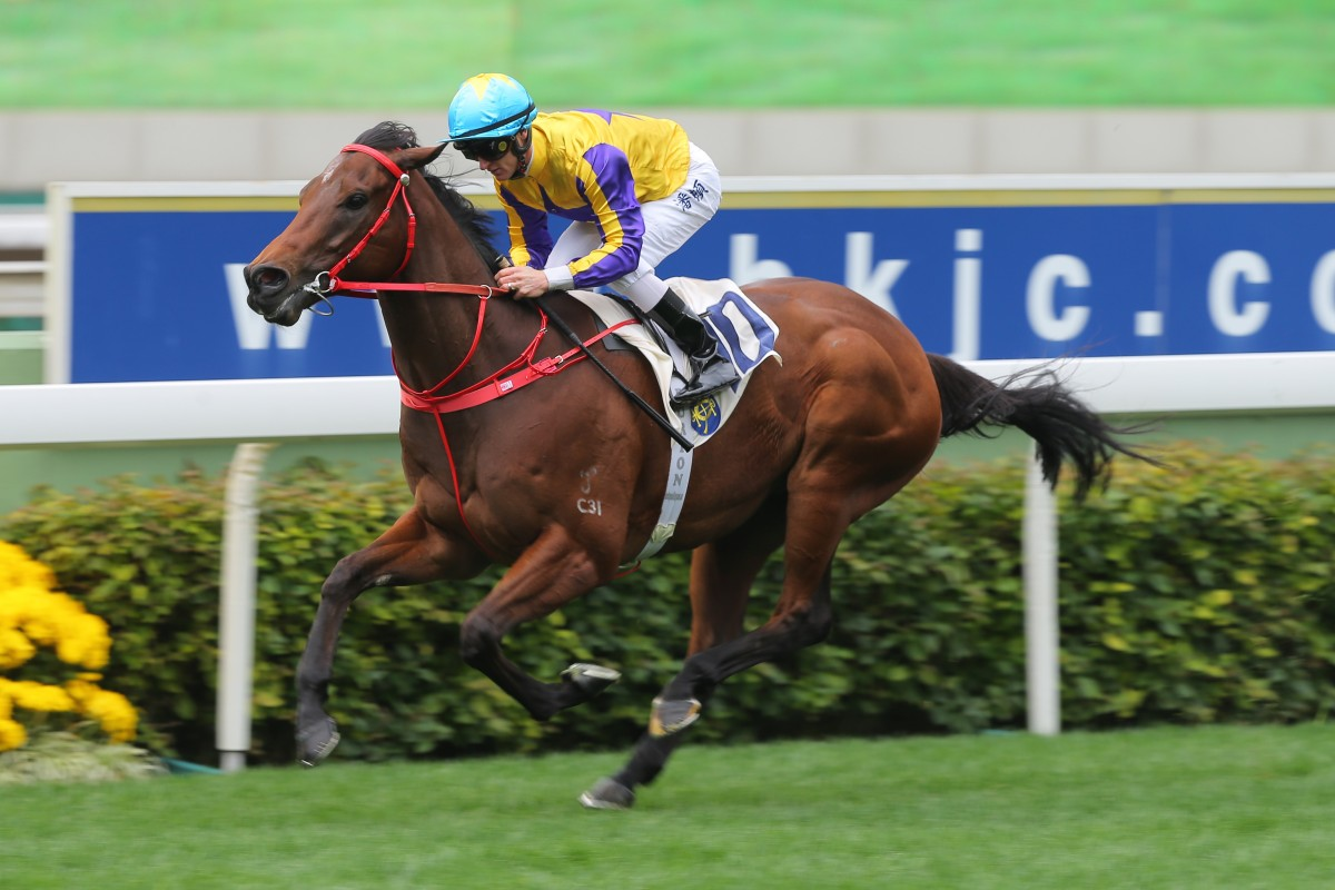 Zac Purton wins on Prince Of Gems on debut at Sha Tin last month. Photos: Kenneth Chan