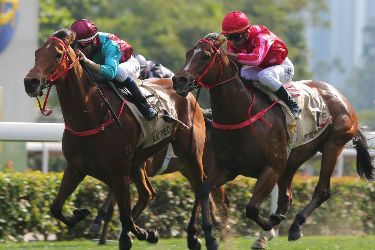Beat The Clock (left) and Mr Stunning (right) go head-to-head up the straight in the Group One Centenary Sprint Cup in January. Photos: Kenneth Chan